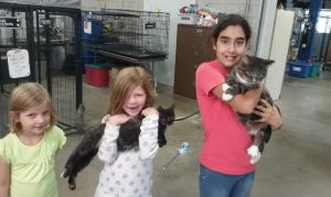 10-24 Lolita and Jazzy adopted