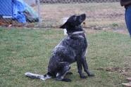 12-14 Tex sits