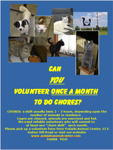 volunteer_flyer