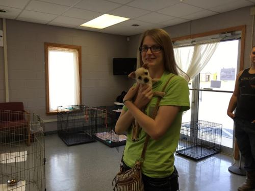5-5 tink adopted